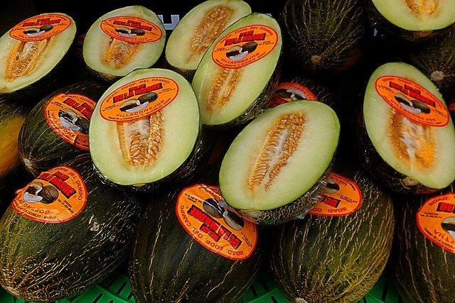 Melons verts d'Espagne
