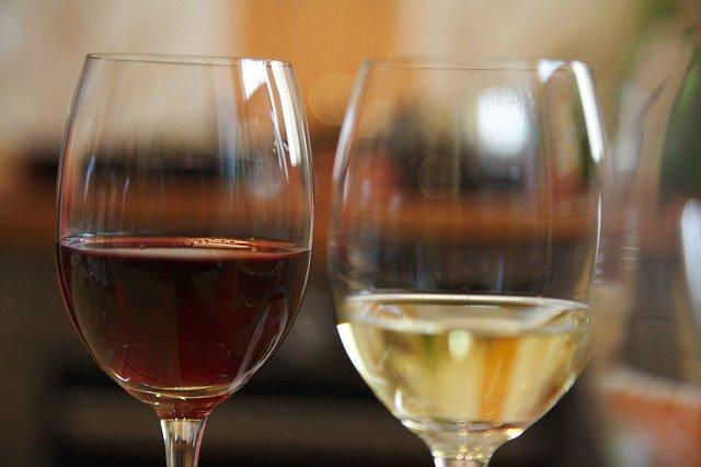 Vins en primeurs et accords mets vins
