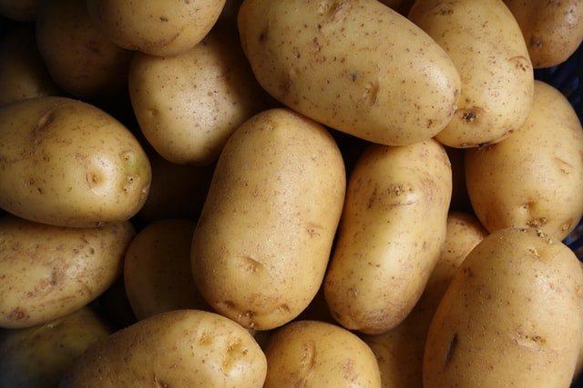 Ragoût de pommes de terre aux artichauts (pommes de terre)
